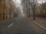 fogstreet